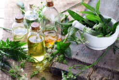 Organic Herbs-Culinary Herbs-Herbal Teas
