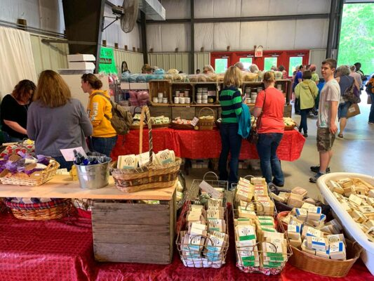 Breezy Willow Farm – Nourishing the well-being of our local