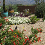 Fairfield in the Foothills, Tucson