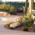Brick paver patio   Landscape one year after redesign