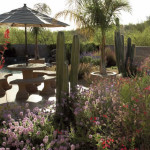 Colored stamped concrete patio in low maintenance desert garden   2007 APLD Gold Award