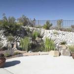 Living pond with aquatic plants and concrete patio