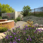 Flowering low water use groundcovers on slope | 2007 ALCA Award of Distinction