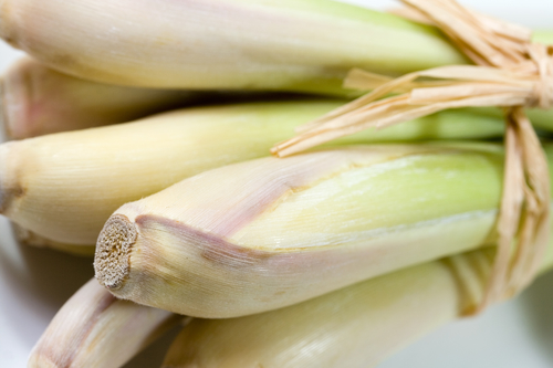 Coconut Lemongrass fragrance