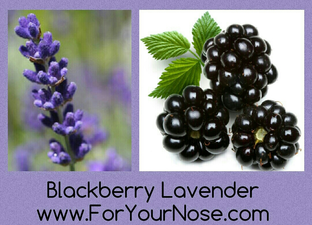 blackberry lavender fragrance