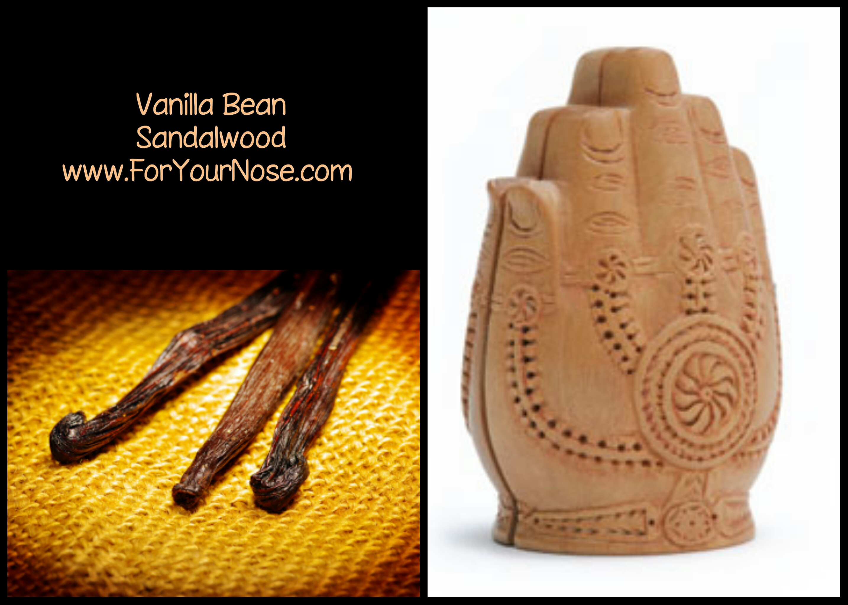 vanilla bean sandalwood fragrance
