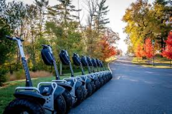 a line of Segway scooters parked alongside road
