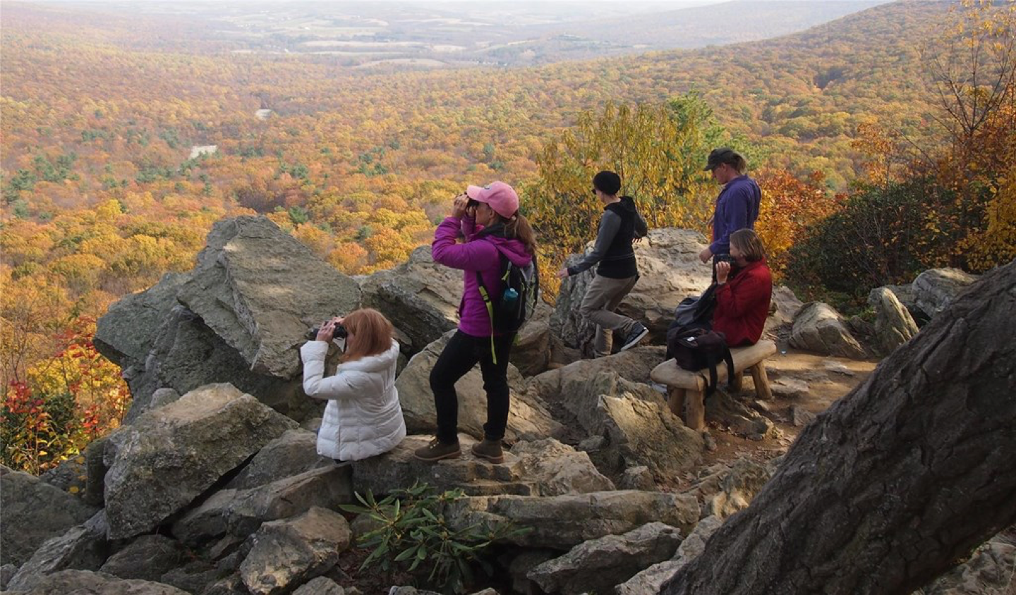 """Group of five bird watchers overlooking """"The River of Rocks"""" at Hawk Mountain Sanctuary."""