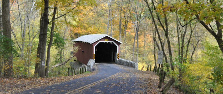 Fall in the forest with a road leading to the entrance of a covered bridge
