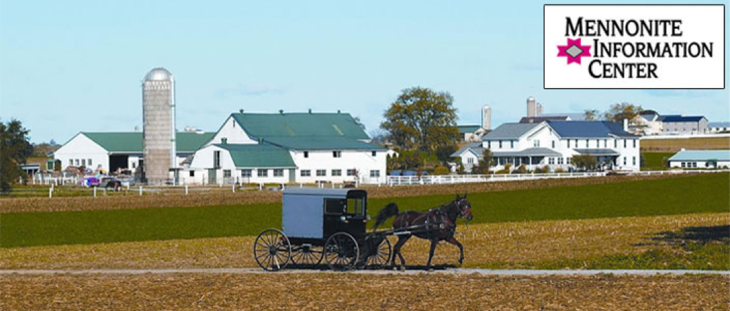 Amish farm with horse and buggy in front