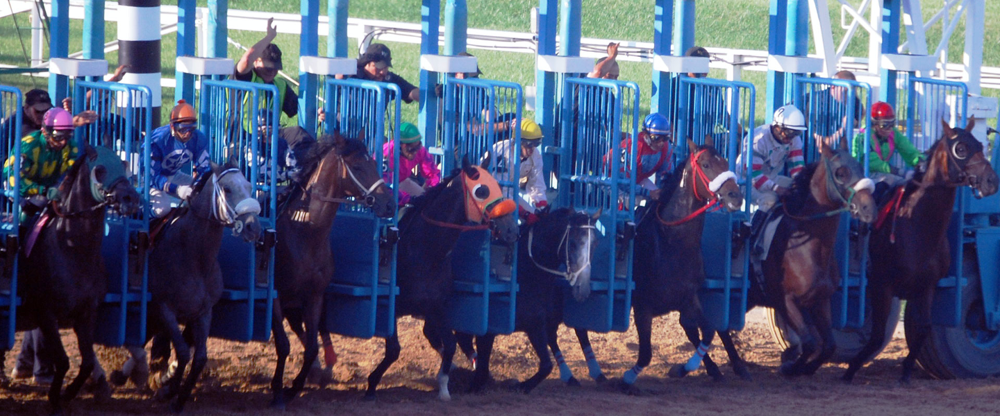 Horses out the gates at Hollywood Casino Racetrack
