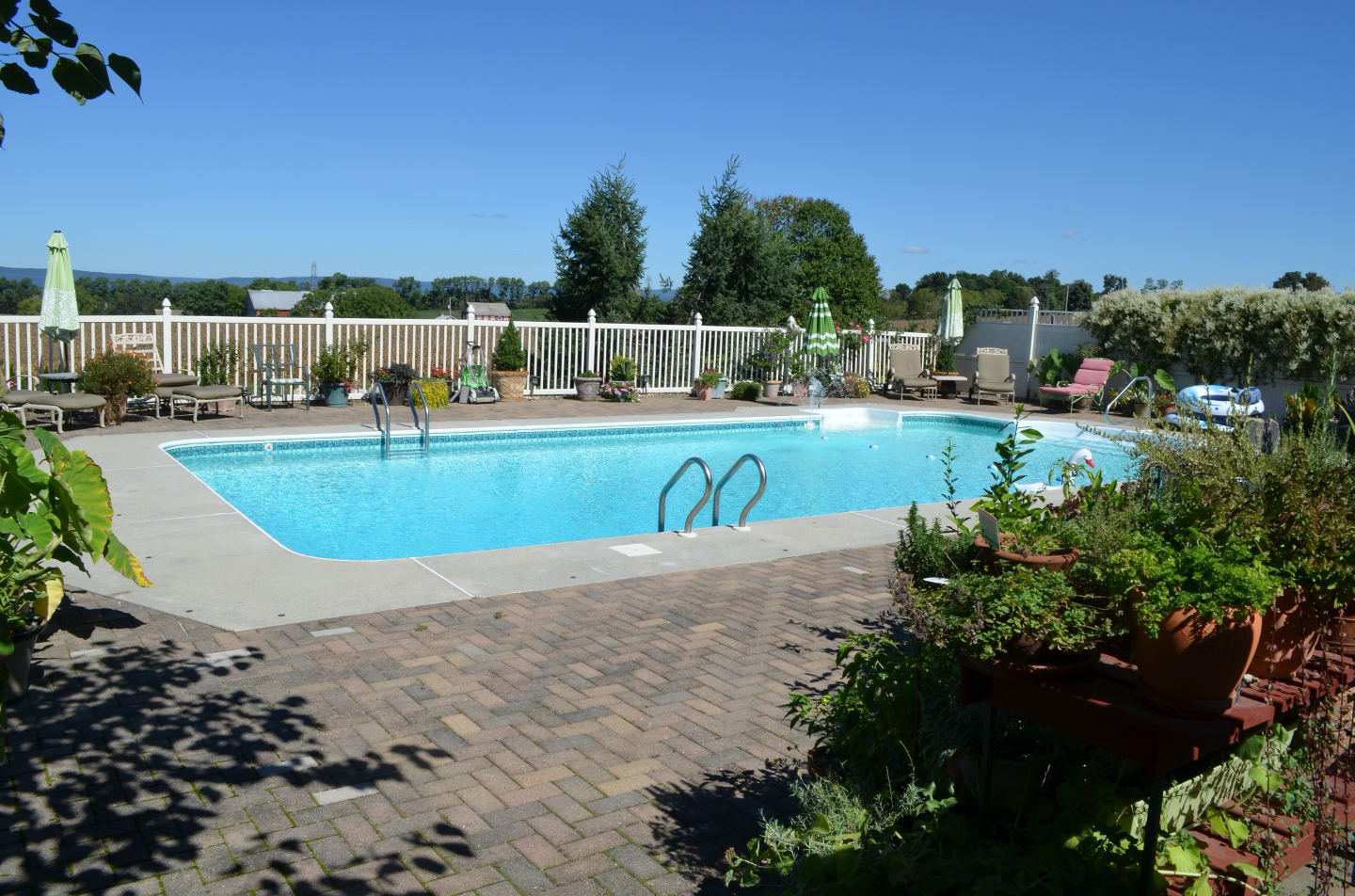 Large swimming pool with big brick deck and surrounded by gardens of potted plants.