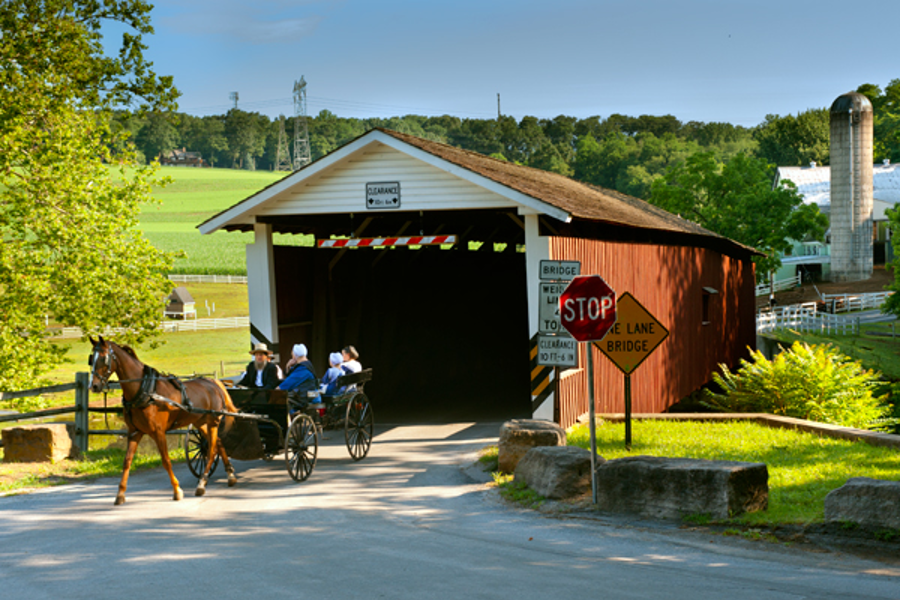 Amish open buggy exiting covered bridge