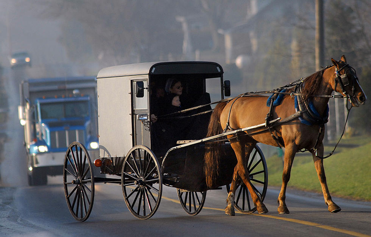 Amish buggy going down road, followed by a big 18wheeler truck