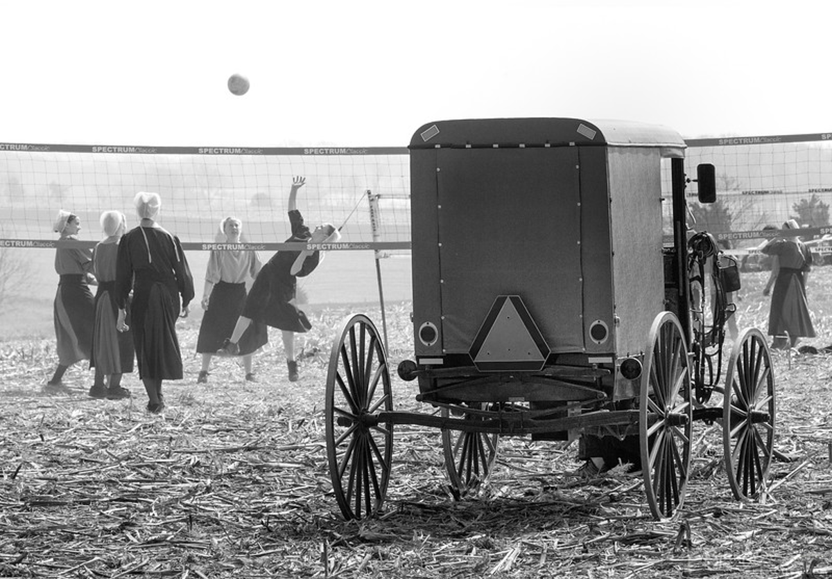 Amish buggy parked at a vollyball court, and girls playing