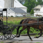 Amish buggy and horse crossing railroad tracks