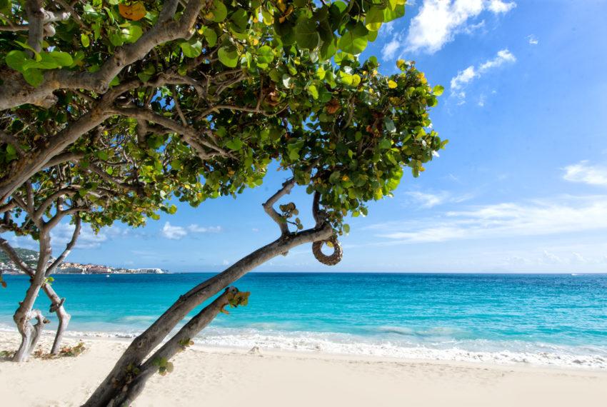 Coco Beach - 017