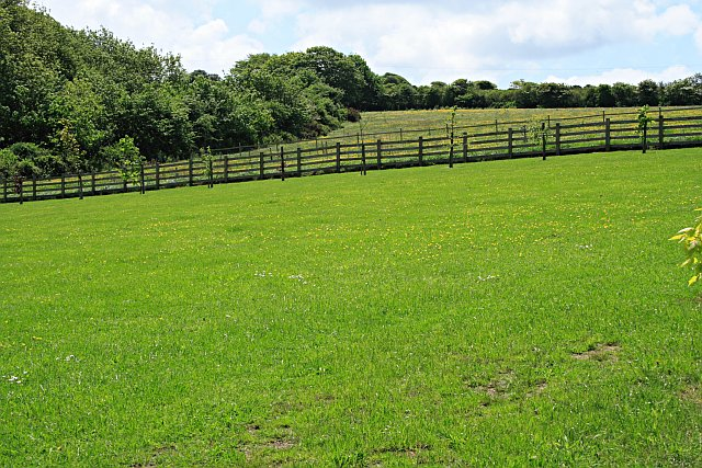 Tips For Clearing Land For Pasture