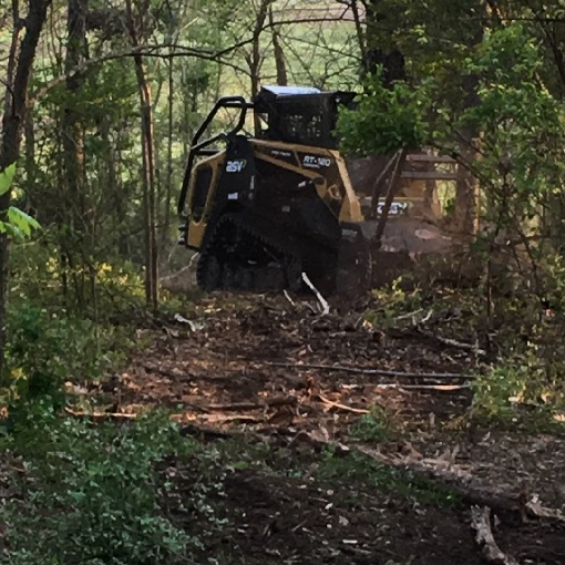 Land Clearing in Mt. Juliet, TN