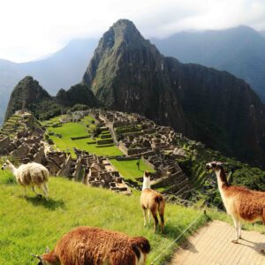 Peru & South America