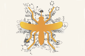 genetically mod mosquito