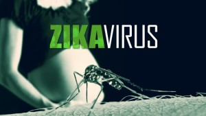 zika-virus