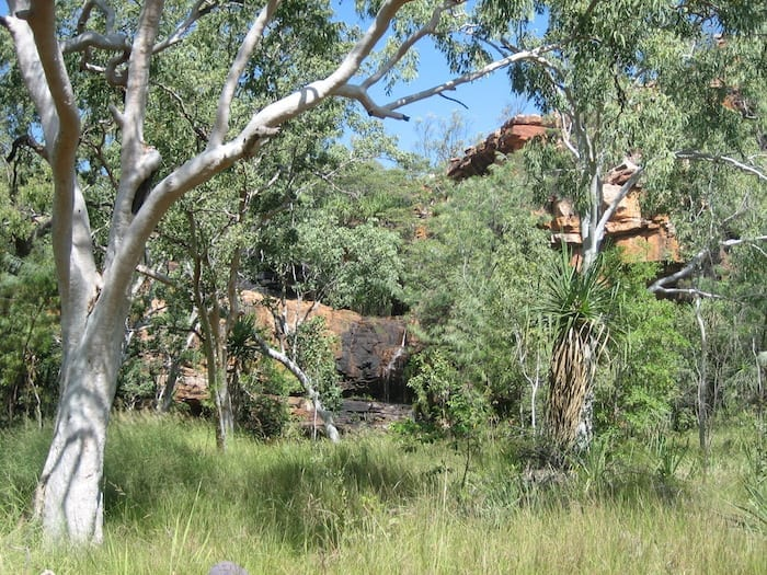 Magnificent Galvans Gorge appears through the scrub.