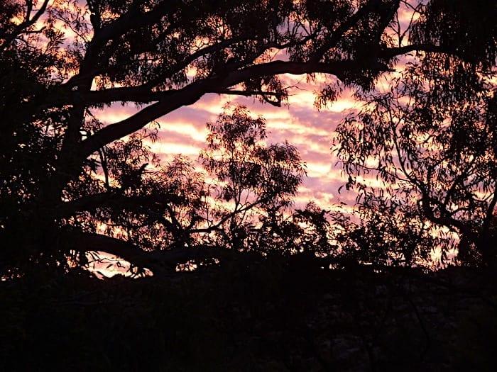 Magnificent sunset at Mornington Wilderness Camp.