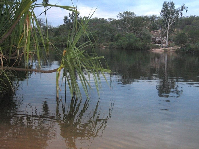 Manning River at Mount Barnett Campground.
