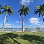 The Cooktown QLD foreshore, overlooking the Endeavour River.
