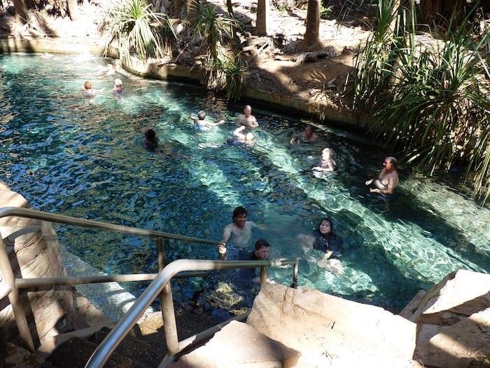 The main pool at Mataranka Thermal Pools.