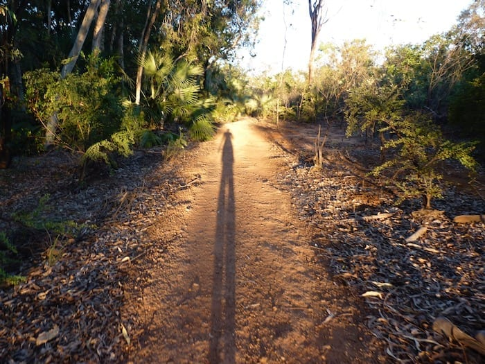 Long shadows in the afternoon sun, Mataranka Thermal Pools.