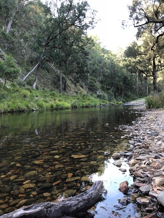 Styx River at Wattle Flat Campground.