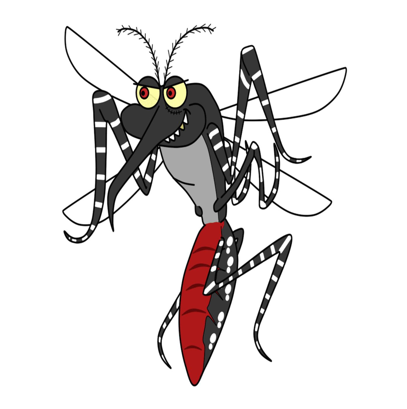 Image of mozzie. Mosquito Repellant.
