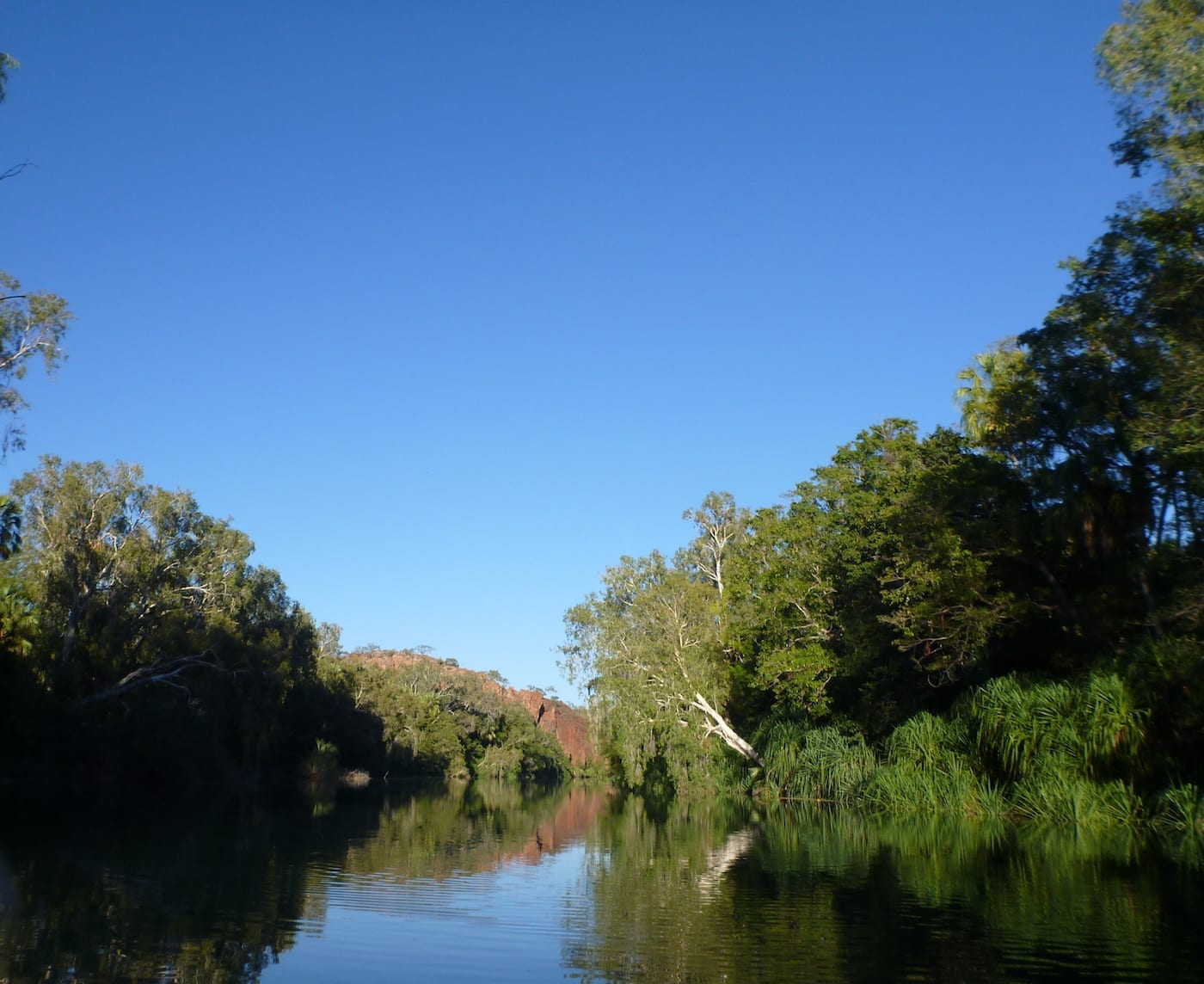 The gorges are spectacular at Boodjamulla (Lawn Hill) NP.