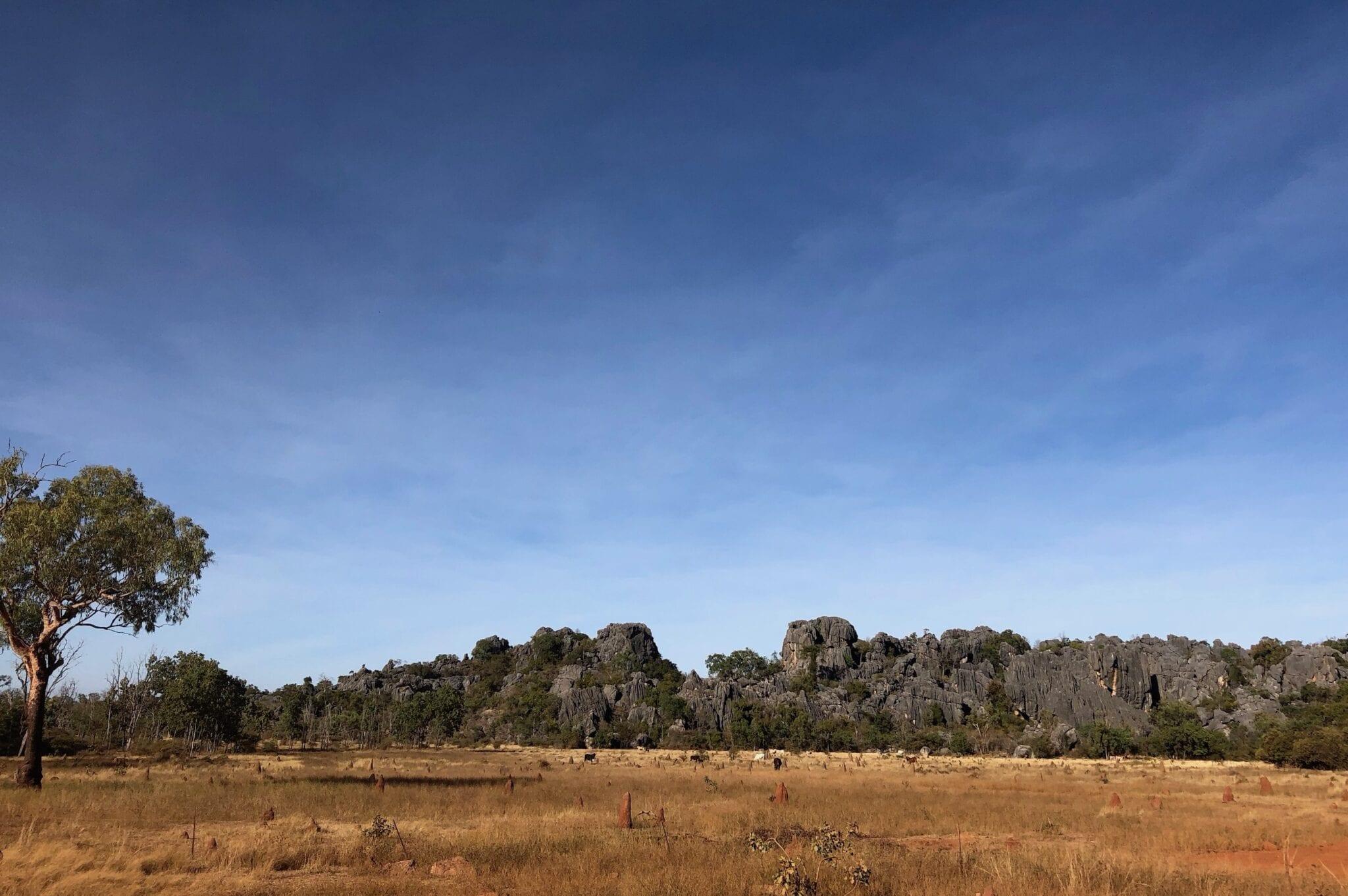 The strange black limestone ranges around Chillagoe.