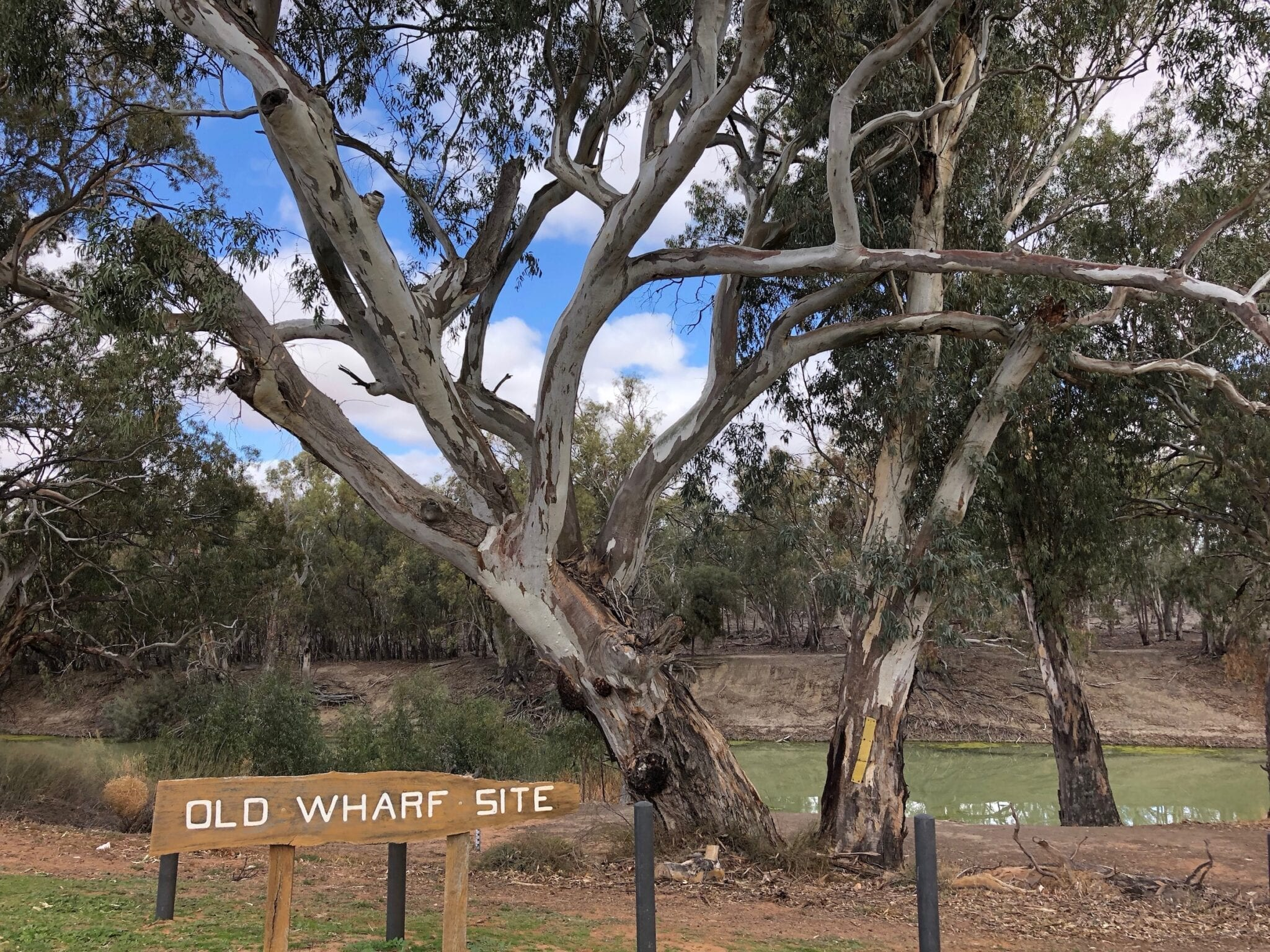 The old wharf site, Darling River Pooncarie NSW.