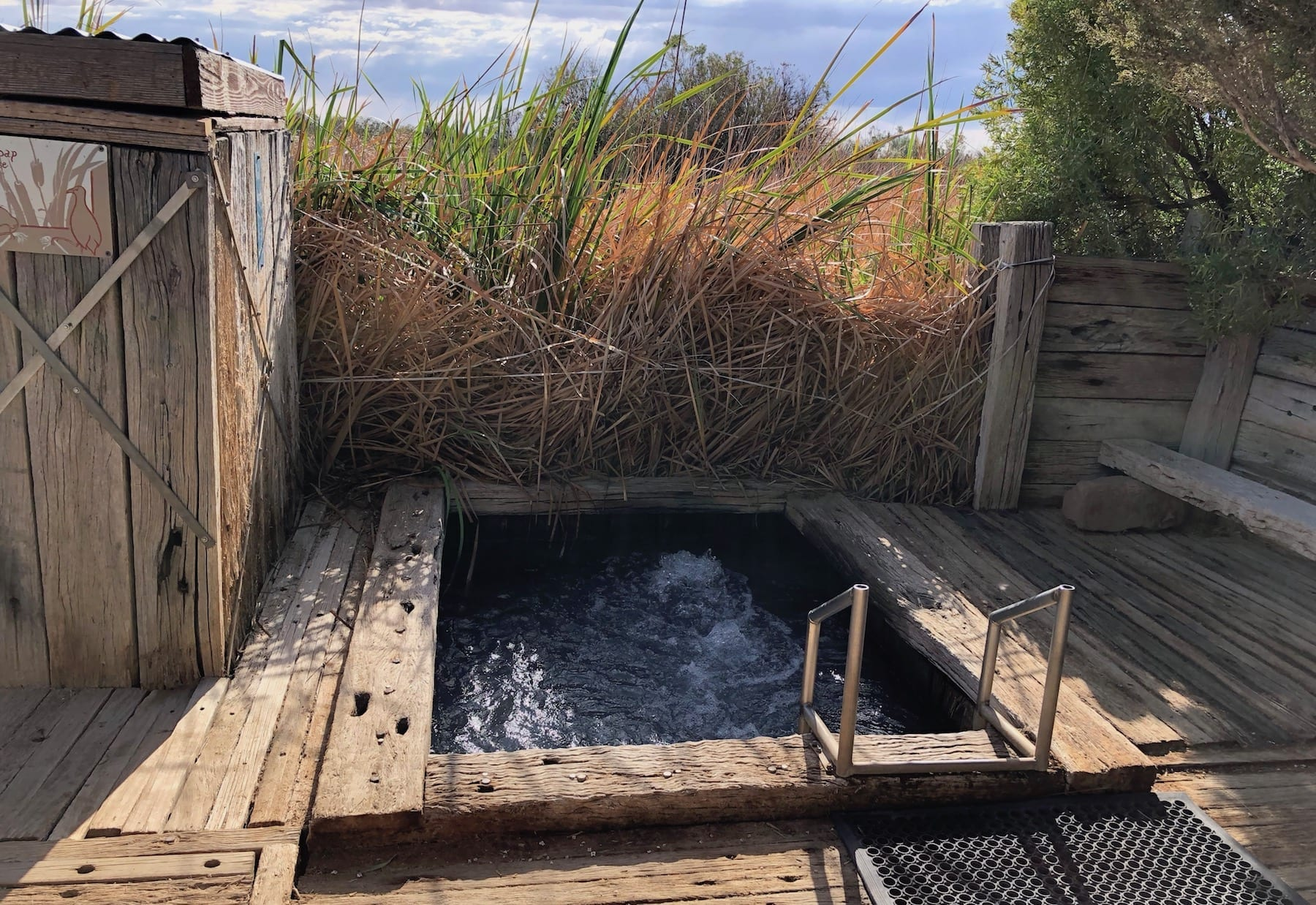 Coward Springs natural spa. The water flows into the wetlands behind the spa.