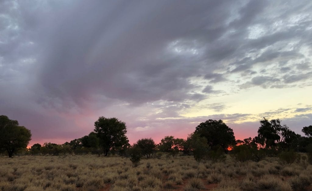 Sunset west of Kata Tjuta. Great Central Road, Great Victoria Desert.