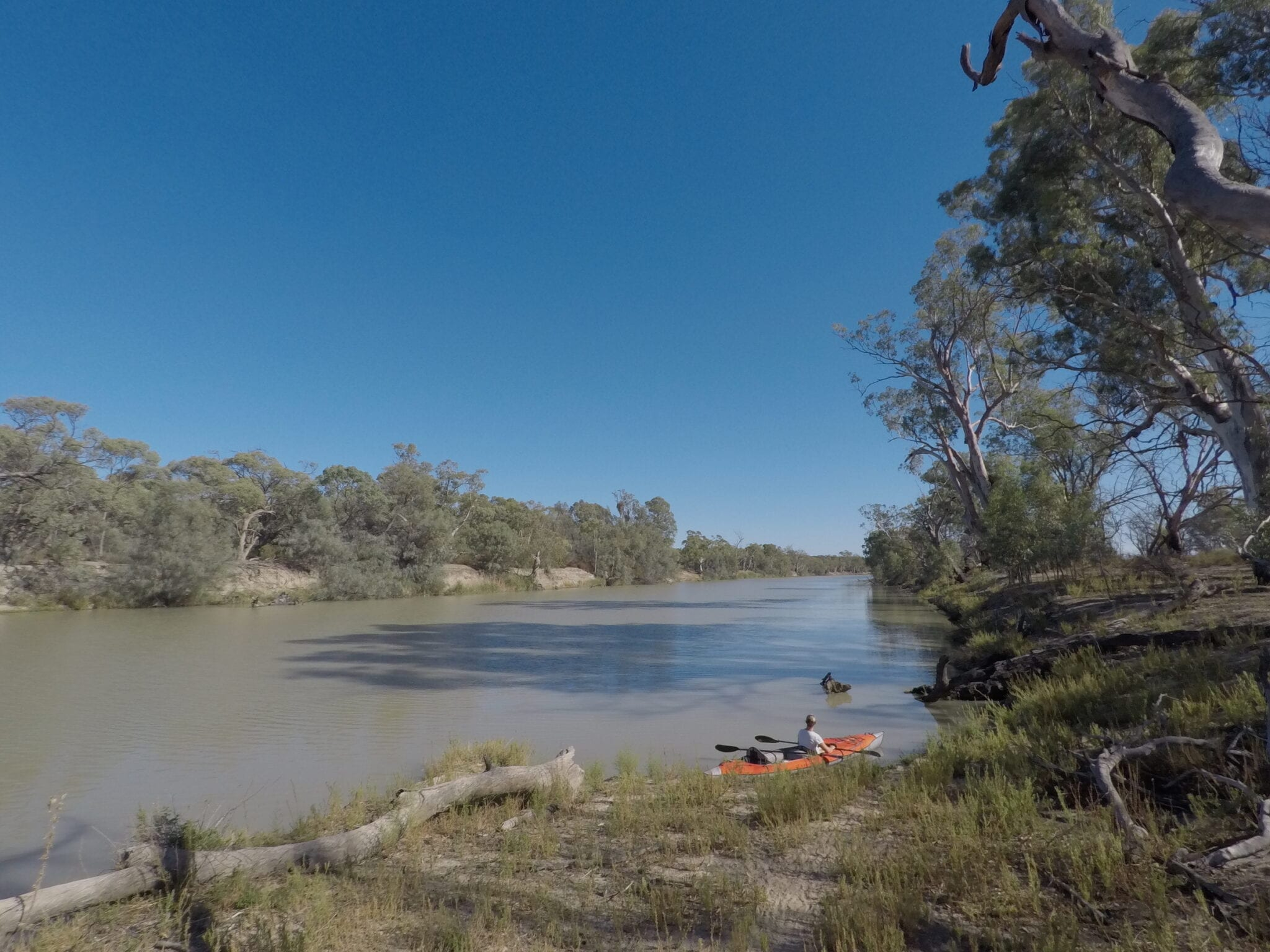 Kayaking The Murray River, looking upstream.