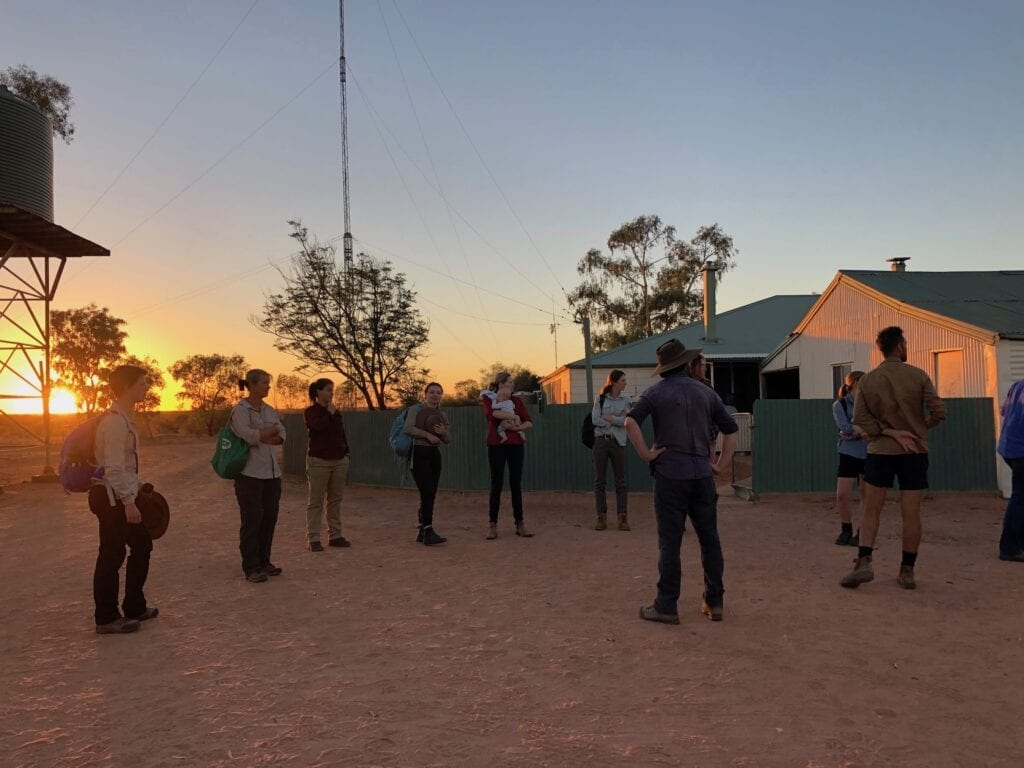 An early start to the annual Ecological Survey at Wild Deserts. Australian marsupials.