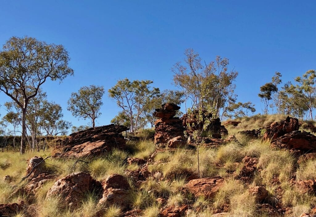 The ancient landscape is awe-inspiring along the Broadarrow Track in Judbarra / Gregory National Park.