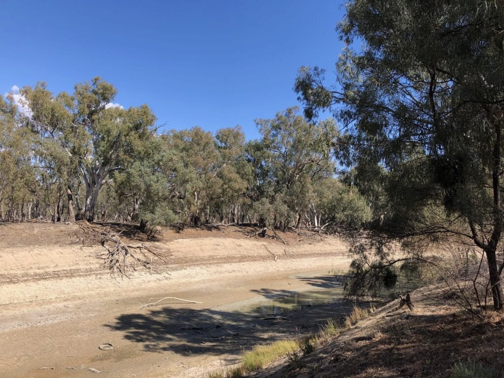 The Darling River at Pooncarie NSW is dry.