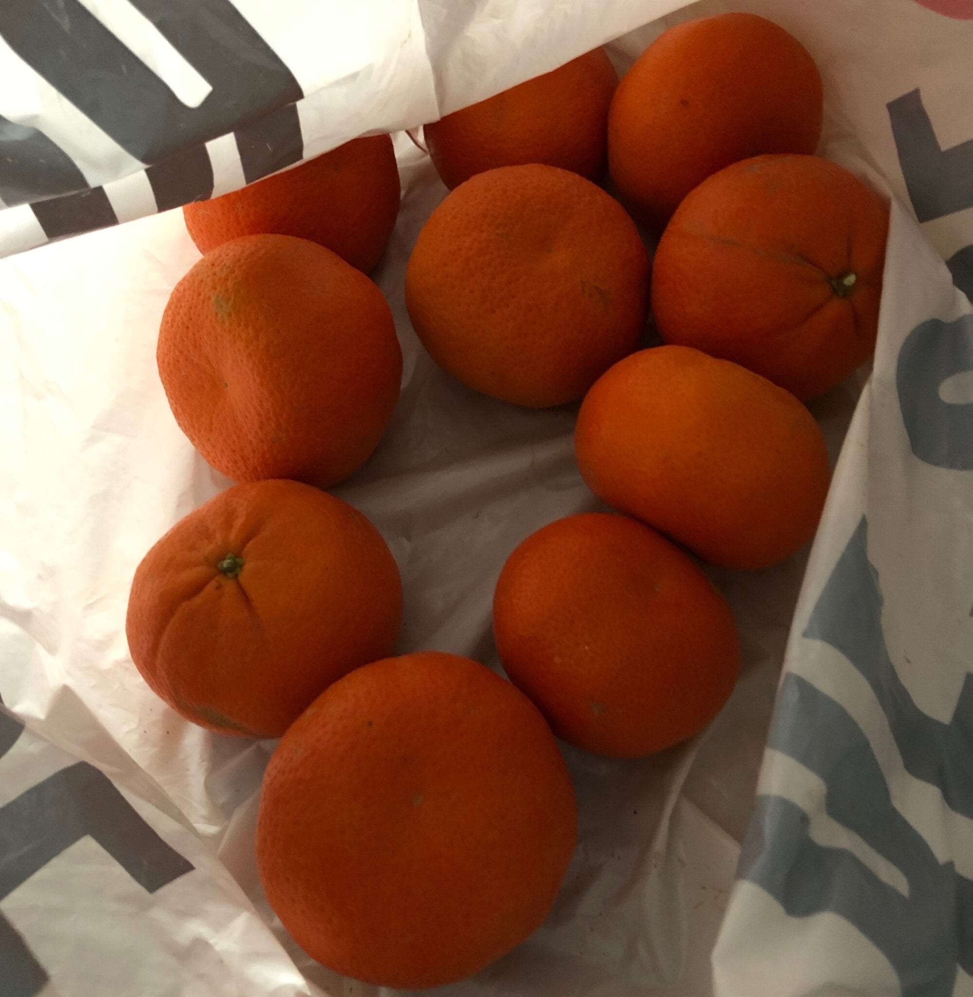This bag of premium quality seedless mandarins will be the last crop grown, as the water has run out on the lower Darling River.