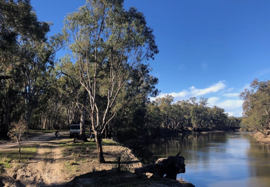 Our campsite at Willibriggie. Murrumbidgee Valley Regional Park.