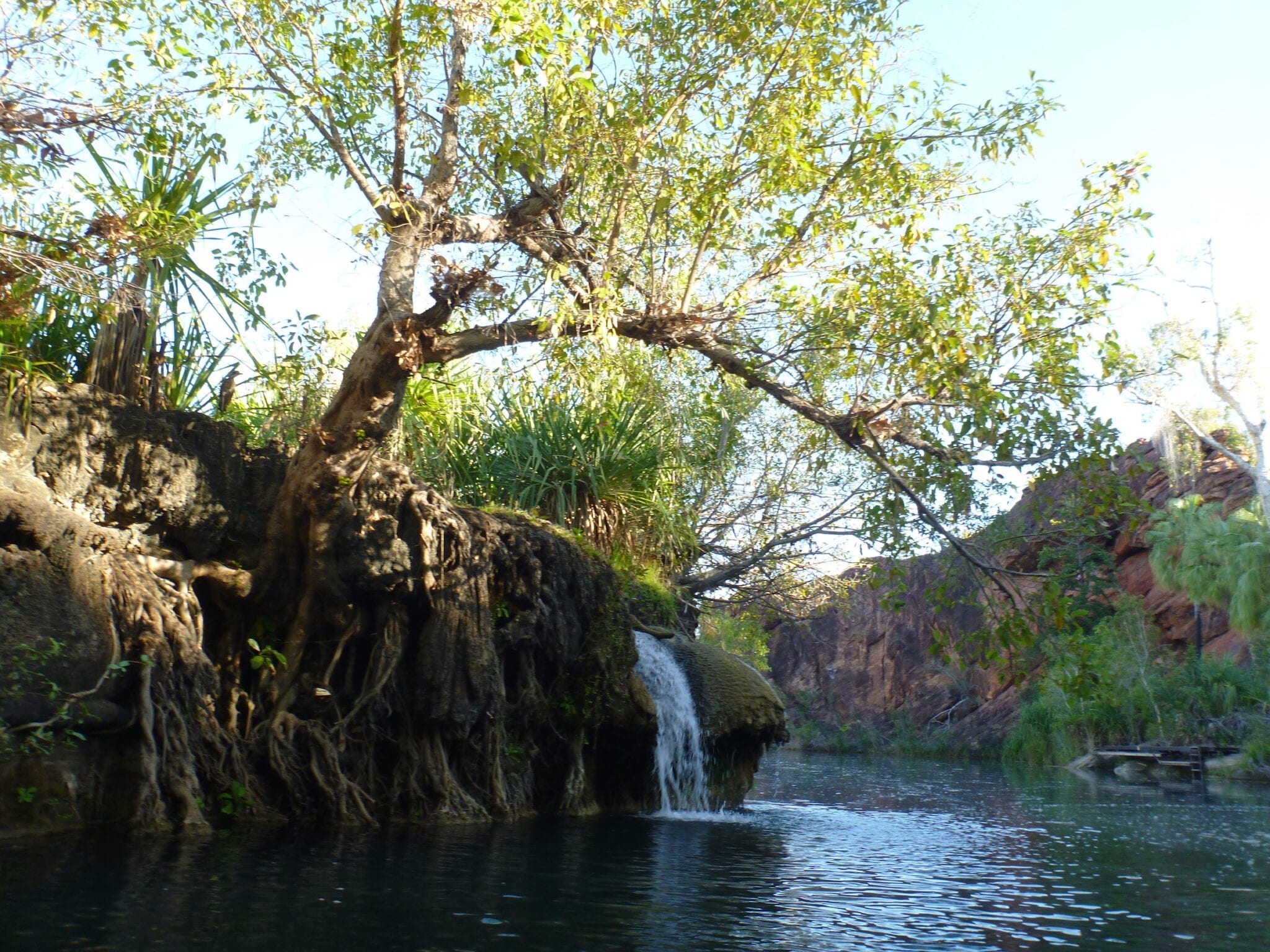 The falls at Boodjamulla (Lawn Hill) National Par. One of our Top 5 outback destinations.