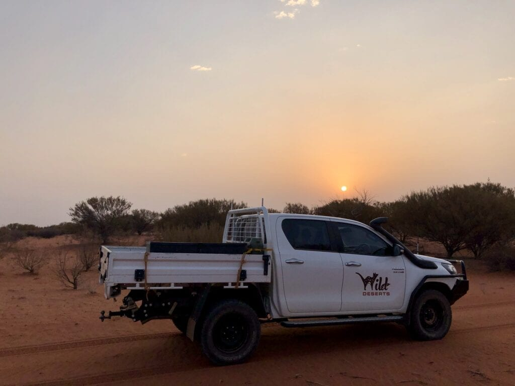 Driving out to start our spotlight check. Wild Deserts, Sturt National Park NSW. Part of our caretaker role.