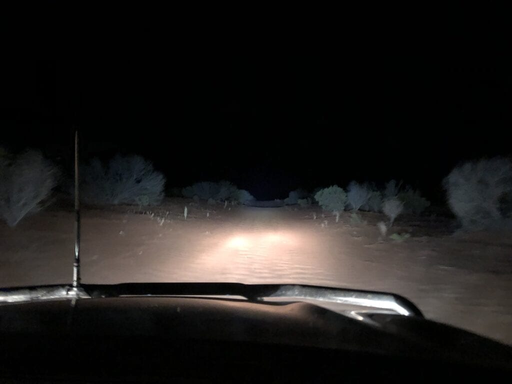 Driving along the NSW/SA dog fence while doing spotlight checks to determine kangaroo poulations. Sturt National Park, NSW. Part of our caretaker role.