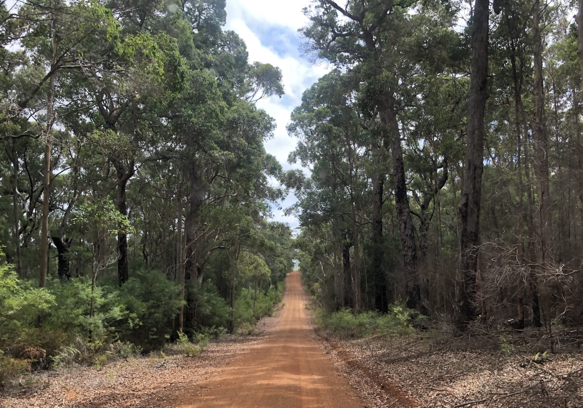 Chesapeake Road, South-West Western Australia.