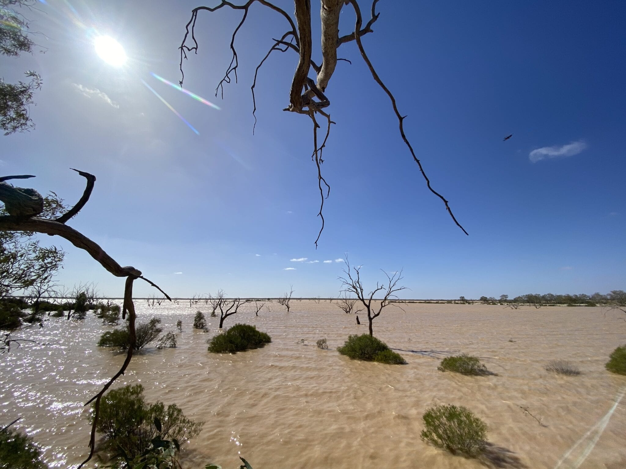 Water in Lake Pinaroo, Sure National Park NSW.